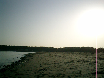 20090214_2